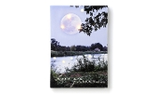 LED Lighted Riverland Canvas Print, Love You To the Moon
