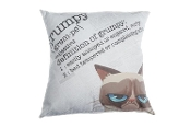 Grumpy Cat Definition Of Grumpy Official Licensed Pillow