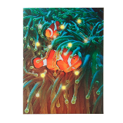 Clownfish in Coastal Reef Lighted Canvas, With Timer