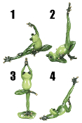 Ganz Gold Toe Yoga Frog Figurines
