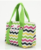Sachi Multi Color Chevron Lunch Bag
