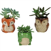 Cute Mini Woodland Creatures Planters, Set of Three