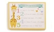Baby Rules Wall Sign