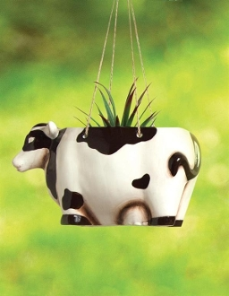 Ceramic Cow Hanging Planter