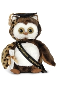 Bearington Bear Wisdom Owl Class of 2018